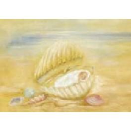 Dobbeltkort - Barn i muslingeskal