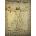 Kunsttryk - Leonardo da Vinci
