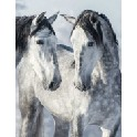Blank notesbog - Magiske heste II