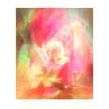 Dobbeltkort - Rose, Kalk, Kors